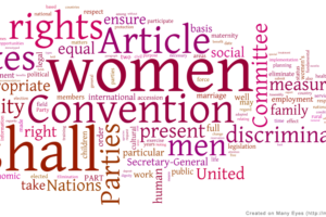 wordle_visualization_of_cedaw